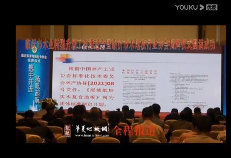 (4)山东临沂木业转型升级工作推进会暨临沂市木地板行业协会揭牌仪式